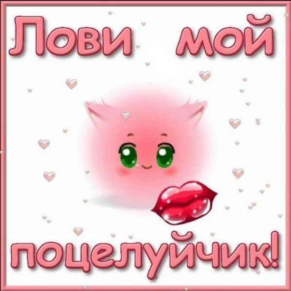 красивые открытки с поцелуями для любимого программа-каталогизатор для